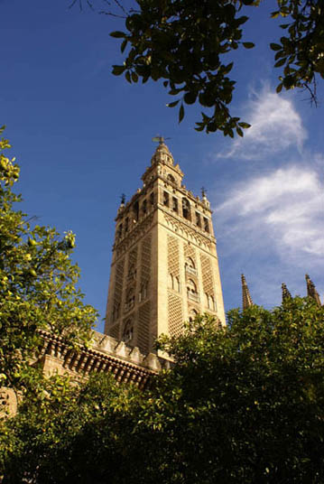 flamenco-studio-seville-trips-giralda-day